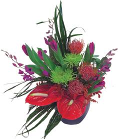http://www.sendflowers.ru/images/all/photogallery/73d4e4d67843e660e17296f77daa12c3.jpg