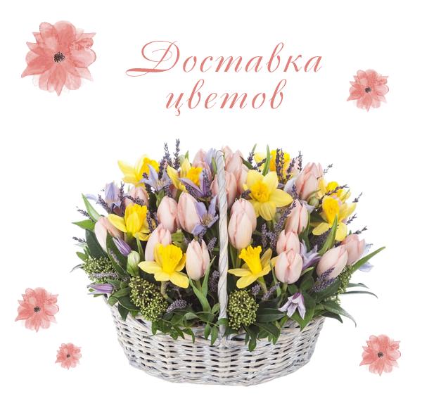 Фотографии цветов на 8 марта