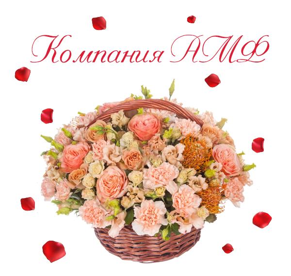 Фото кремовых роз