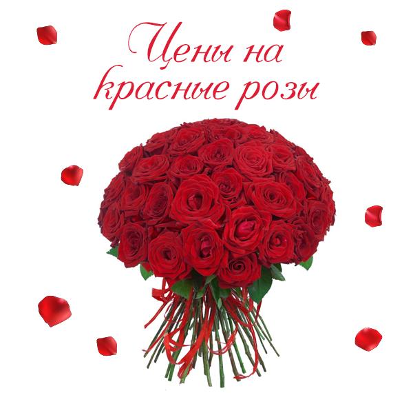 Картинка роскошных красных роз
