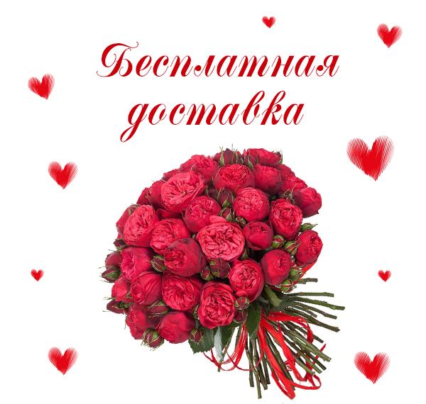 Фото красивых цветов на заказ