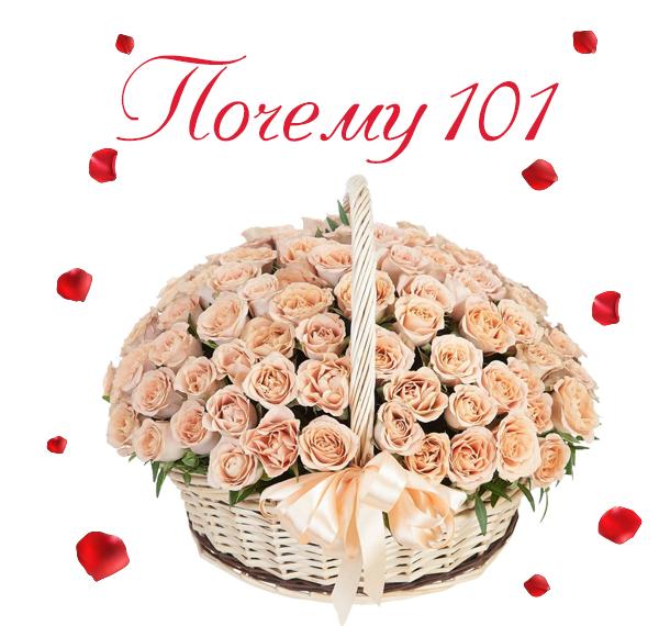 Картинка 101 розы