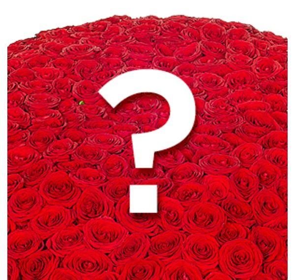 1001 роза фото