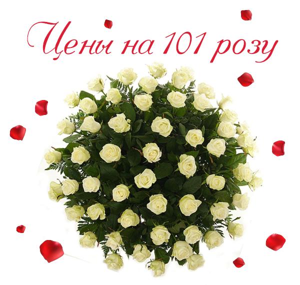 Фото 101 розы