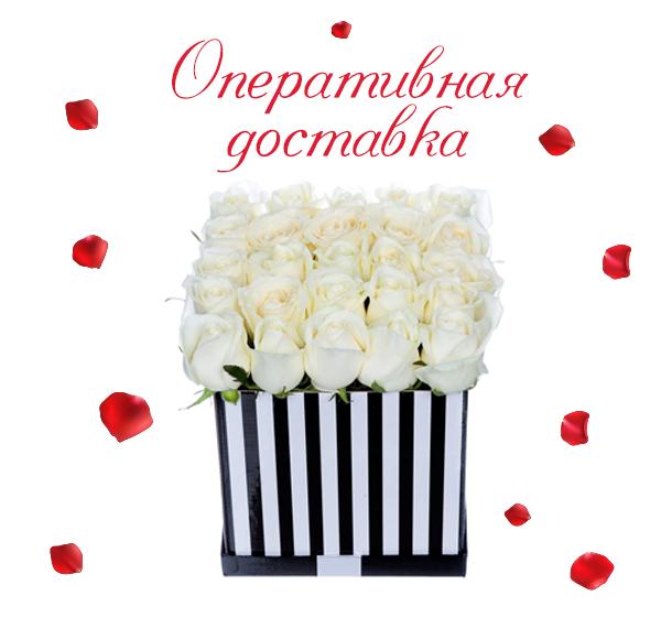 Фото доставленных белых роз
