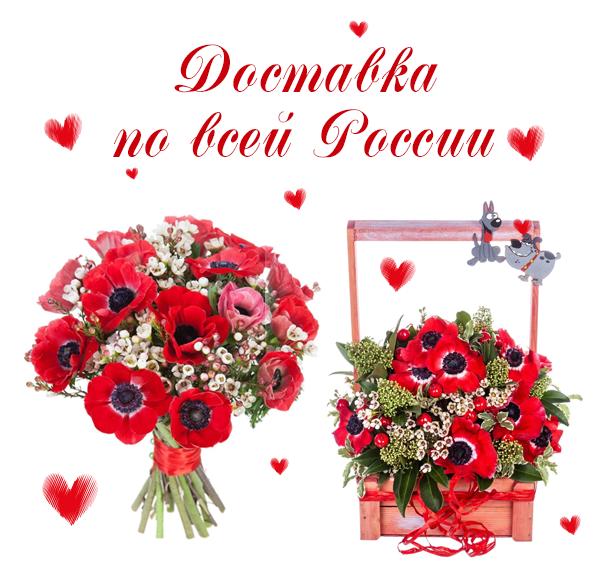 Фото цветов для покупки