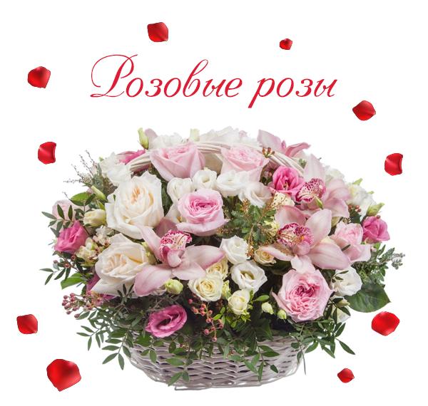 Фото розовых роз