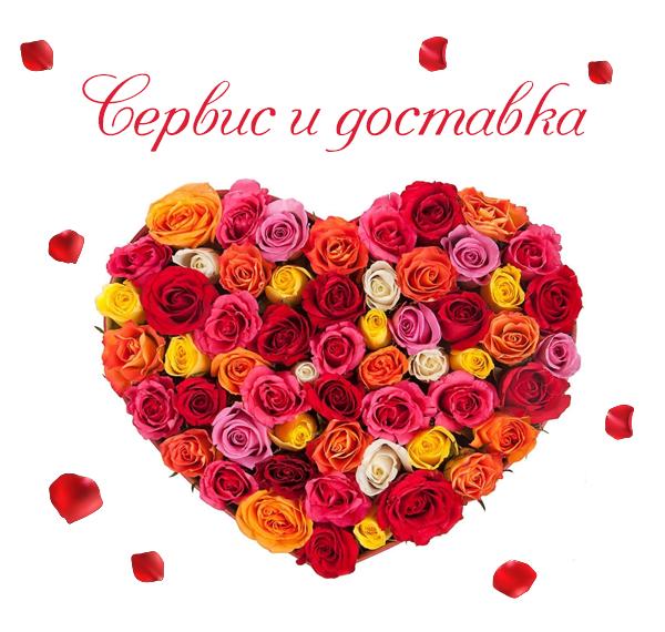 Фото красных роз с сдоставкой