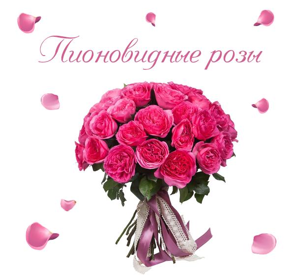 Фото пионовидных роз