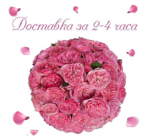 Фото доставленных пионовидных роз