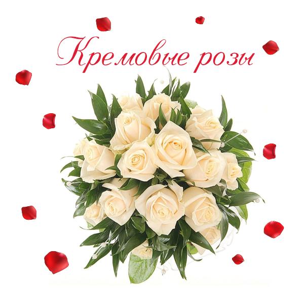 Фото нежных кремовых роз