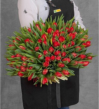 Букет красных тюльпанов (25, 51 или 101)