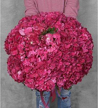 """Букет гортензий """"Ruby Red"""" (17 или 35)"""