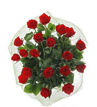 """Букет из 19 роз """"Счастливое утро"""""""