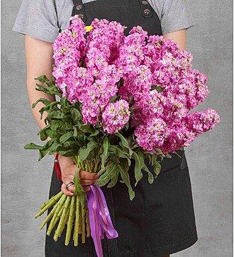 Букет розовой маттиолы (15, 25 или 51)