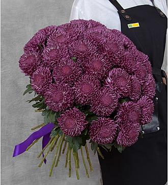 Букет одноголовых хризантем Bigoudi Purple (21, 35 или 51)