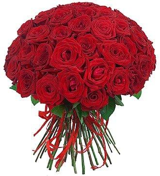 """Букет роз """"Для Вас!"""" (25, 51 или 75)"""