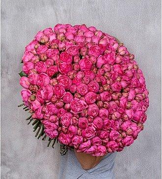 """Букет из пионовидной розы """"Pink Piano"""" (75 или 151шт)"""
