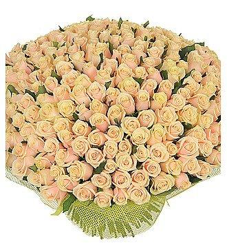 """Букет из 251 кремовой розы """"Совершенство"""""""