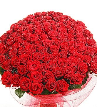 """Букет из 101 красной розы """"Песня о счастье"""""""