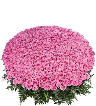 """Композиция из 501 розовой розы """"Самой любимой"""""""