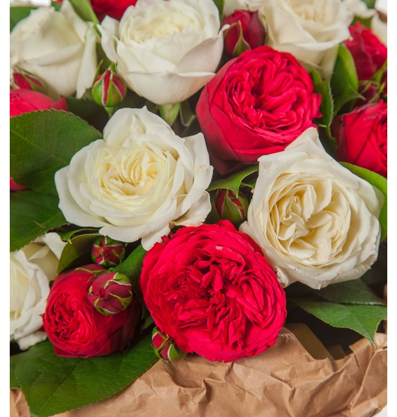 Букет из пионовидных роз Вечность (15, 25 или 51) – фото № 2