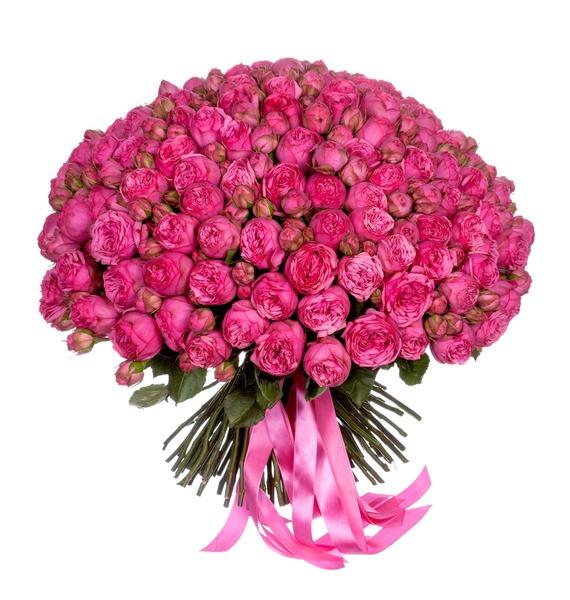 Букет из 151 пионовидной розы Pink Piano – фото № 5