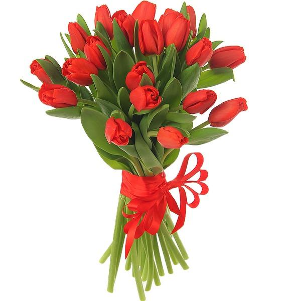 Букет из 21 красного тюльпана кабель 3 5 на два тюльпана