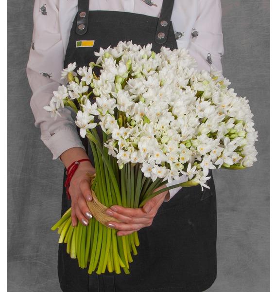 Букет кустовых белых нарциссов (25, 51 или 101) букет из кустовых роз иллюзия