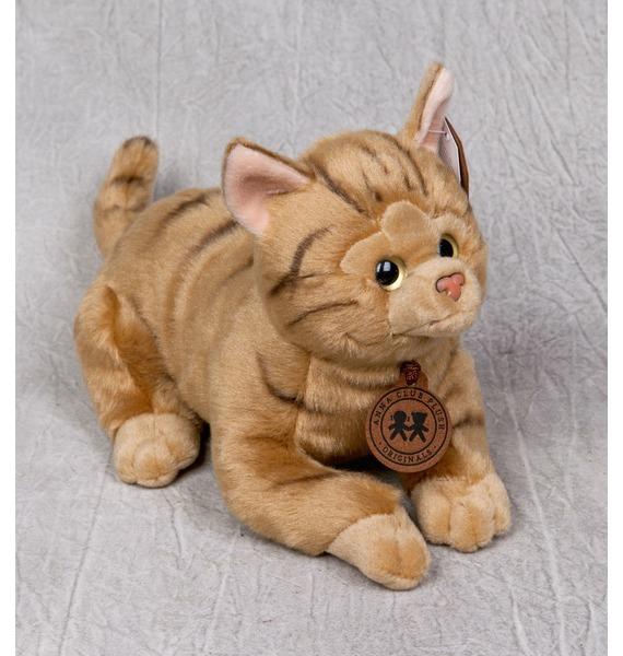 """цены на Мягкая игрушка """"Бенгальская кошка"""" (20см)  в интернет-магазинах"""