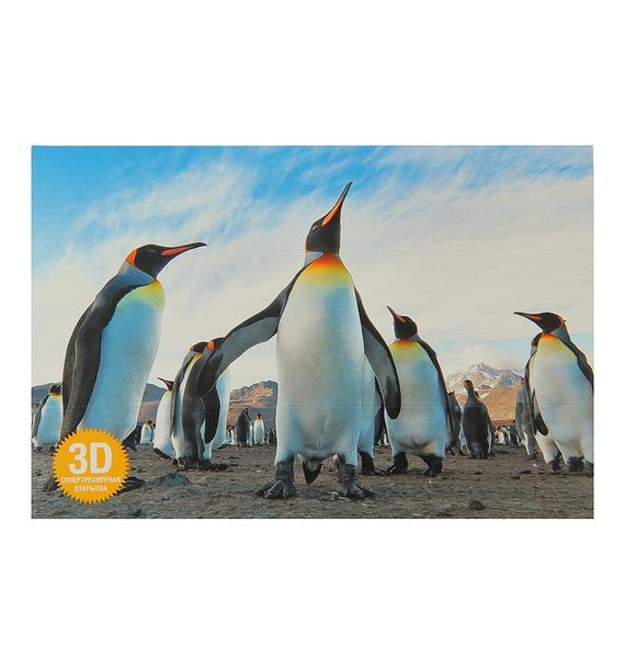 Открытка 3D Пингвин 3d мозаика пингвин 140 бусинок 150104 3