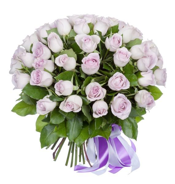 Букет роз Morning Dew (25, 51 или 75 роз) – фото № 1