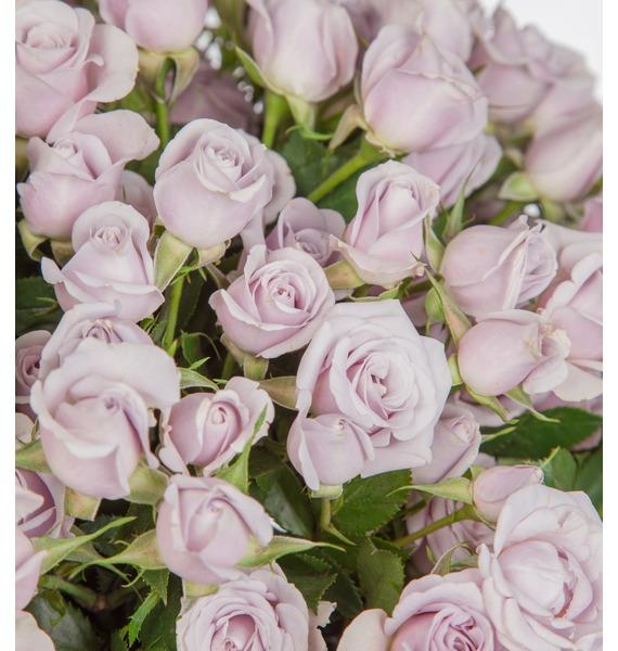 Букет кустовых роз Silver Shadow (25, 51 или 75) – фото № 2