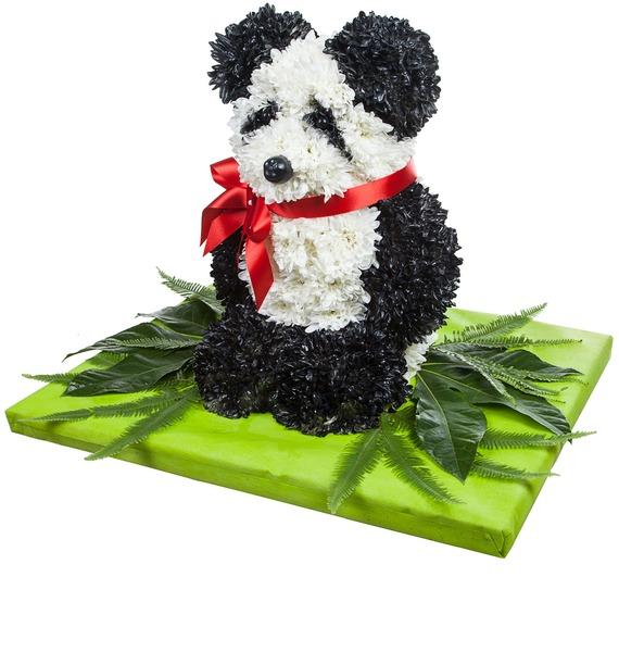 Композиция Панда свитшот print bar панда гангста