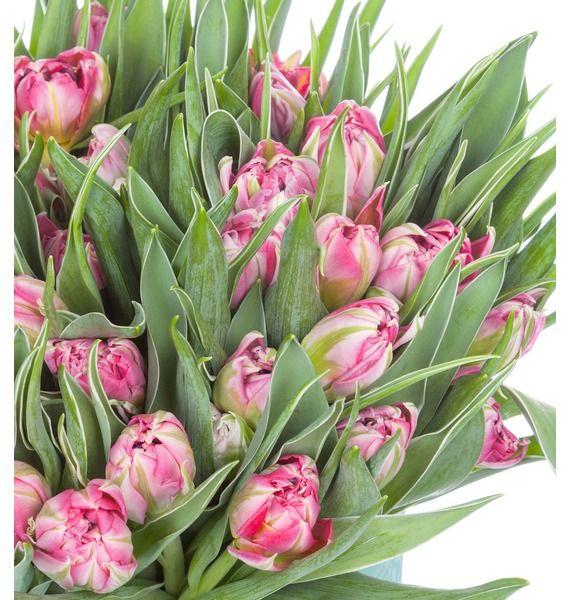 Пионовидные тюльпаны Flash Point в вазе – фото № 3