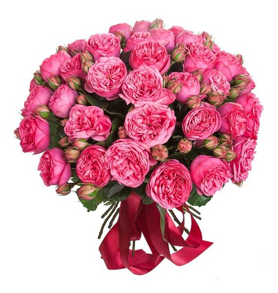 Букет из пионовидных роз Pink Piano (15, 25 или 51) hope collection короткое платье