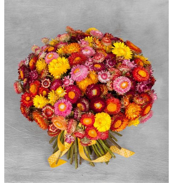 Букет из 101 Helichrysum – фото № 1