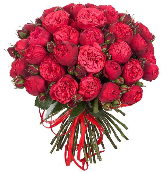 """все цены на Букет из пионовидных роз """"Piano"""" онлайн"""
