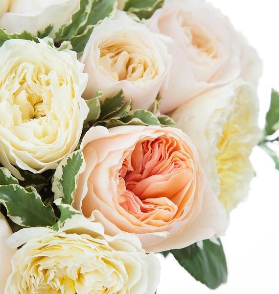 Букет из английской розы David Austin (21, 35 или 51) – фото № 4