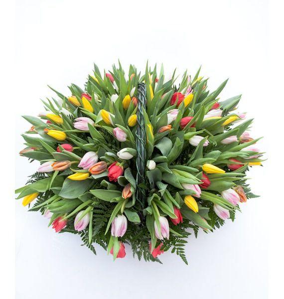 Композиция из тюльпанов Драгоценная моя... (51, 101 или 201) композиция моя киса