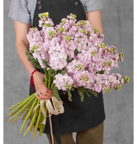 Букет нежно-розовой маттиолы (15, 25 или 51) цена