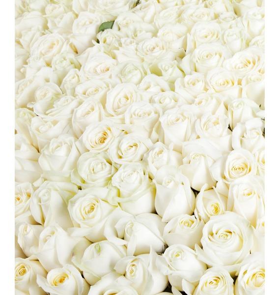 Композиция из 1001 белой розы Сердце Ангела – фото № 3