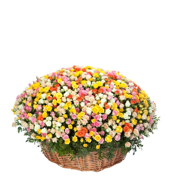 Композиция из кустовой розы (101, 251 или 501 роза)
