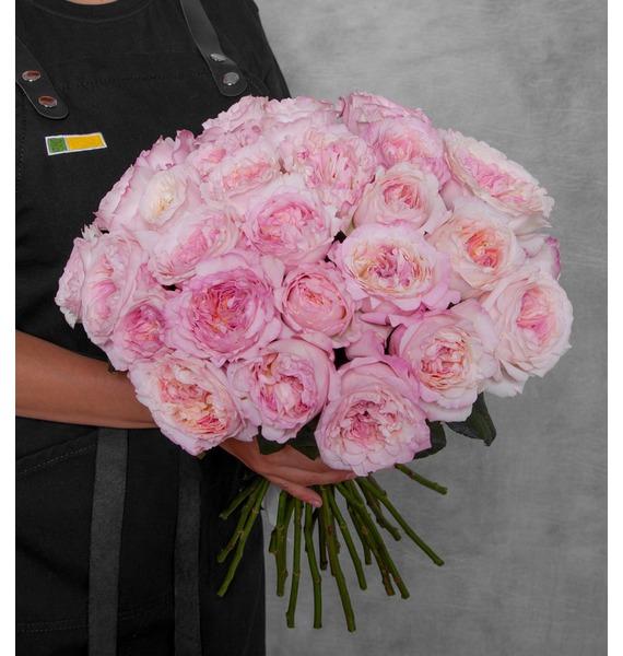 Букет из пионовидных роз David Austin (15, 25 или 51)