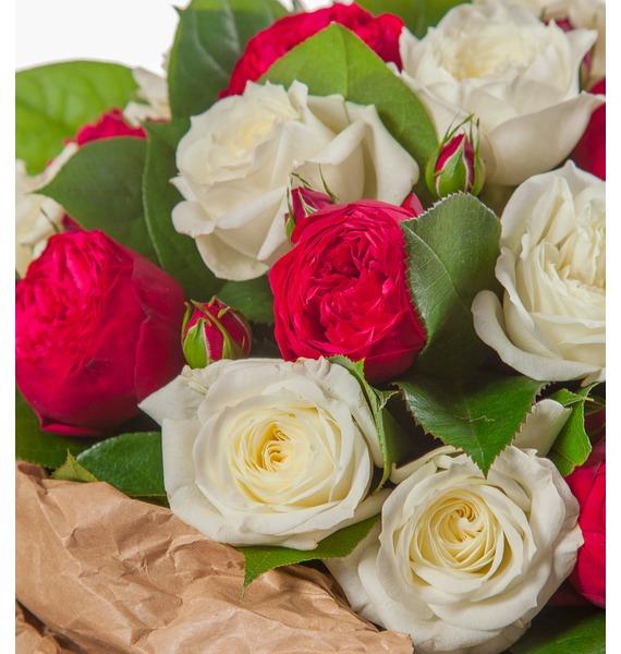 Букет из пионовидных роз Вечность (15, 25 или 51) – фото № 3