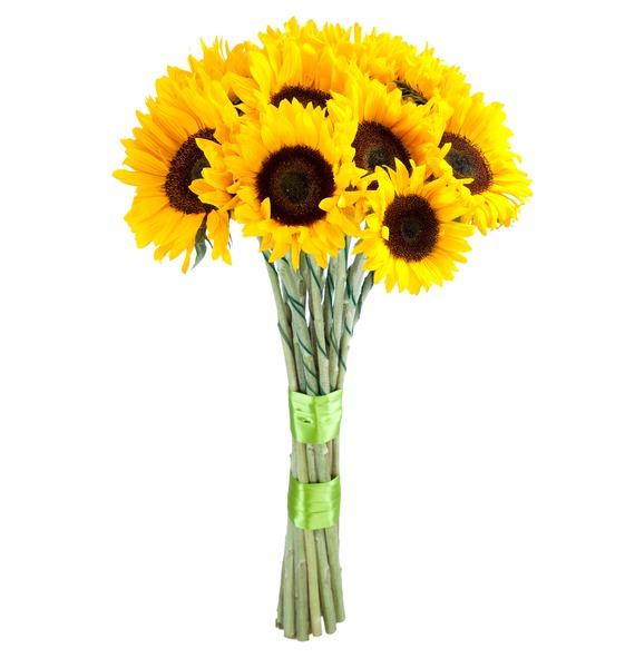 Букет Солнечное настроение бытовая химия chirton ароматическое саше солнечное настроение 15 г