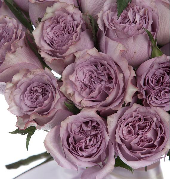 Букет из роз Dolcetto (25, 51 или 101) – фото № 5