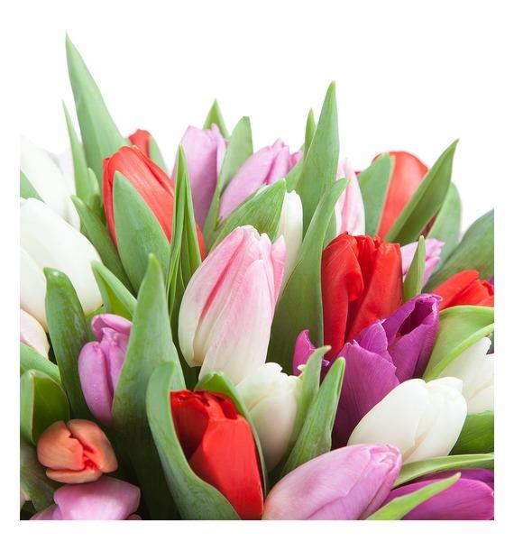 Букет Любимой маме (25 или 51 тюльпан) – фото № 3