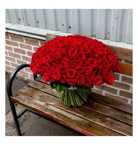 Bouquet of 201 red roses You are my world! – photo #2