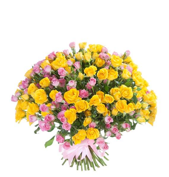 Букет из кустовой розы Краски (51 или 101) цена